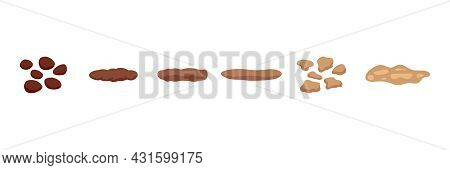 Stool Faeces Type Classification, Structure Excrement. Types Consistence Feces. Normal And Problem U