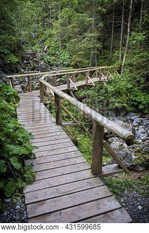 Coniferous Forest And Wooden Bridge In Belianske Tatras Mountains, Slovak Republic. Hiking Theme. Se