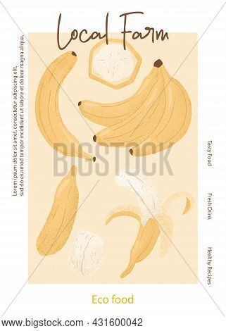 Fruit Banana Juice Packaging Card Design. Sweet Banana Fruits Vector Hand Drawn Poster Concept.