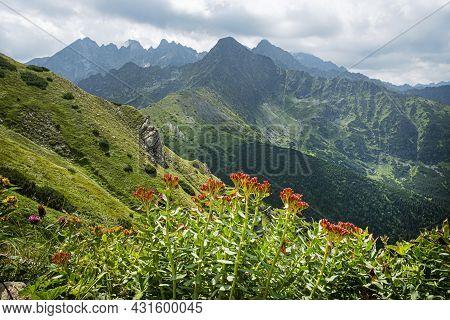 Jahnaci Peak From Wide Saddle, High Tatras Mountains, Slovakia Republic. Seasonal Natural Scene. Tra