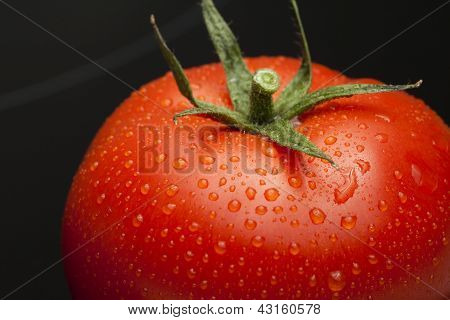 Tomato single with drops isolated on black