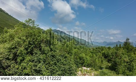 Lush Forest At The Foot Of The Mountains. Green Deciduous Trees Against The Background Of Slopes And