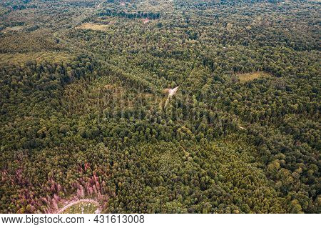 Deforestation By Total Illegal Logging, Top View.