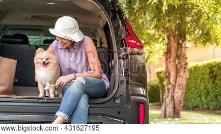 Dog With Owner Concept -  Lovely Puppy Pomeranian Dog With Asia Women Owner At The Back Of Suv Car O