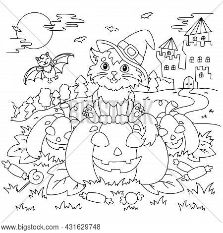 A Cat In A Witch Hat Sits On A Pumpkin At Night. There Are Bats And A Lock On The Back. Halloween Th