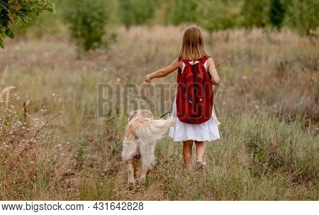 Little girl with backpack walking with golden retriever dog in the field in summer day. Cute child kid with doggy pet on meadow
