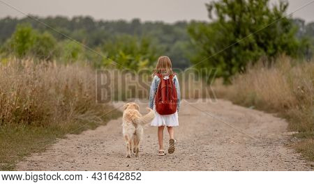 School girl with backpack and golden retriever dog walking in the field. Preteen child kid with doggy pet at nature portrait from back