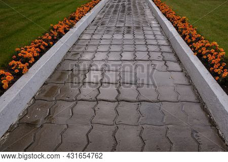 Concrete Bricks Footpath On The Green Grass With Flowers After The Rain, Abstract Background Of Tile