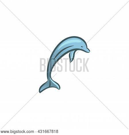Ocean Dolphins Mammal Animal Swim Underwater Illustration