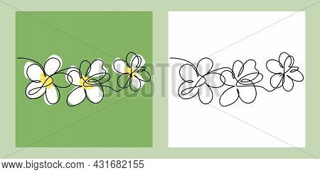 Flowers, Continuous One Line Art, Single Line Drawing Art, Organic Design, Simple Art Design, Abstra
