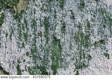 Shabby Peeling Off Green Paint Wall With White Plaster Smudges - Close-up Abandoned Building Wall Te