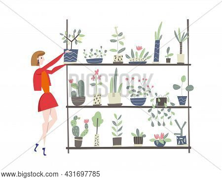 Young Woman Takes Care Of Houseplants. Caring For Indoor Plants, Hobby. A Florist Or A Customer In A