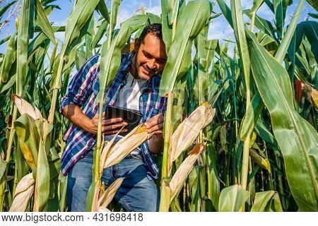 Happy Farmer Examining His Growing Corn Field.