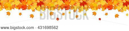 Autumn Web Banner With Falling Maple Leaves