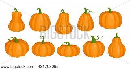 Cartoon Orange Cute Pumpkin Clipart Collection, Fall Squash Vegetable, Autumn Farm Harvest, Thanksgi