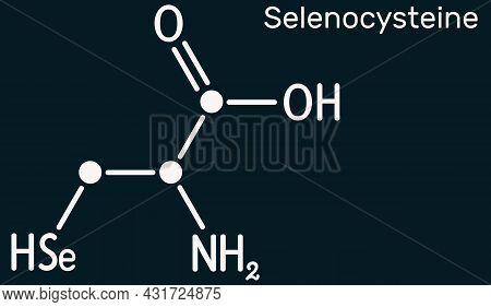 Selenocysteine, L-selenocysteine, Sec, U Molecule. It Is Proteinogenic Amino Acid, Selenium Analogue