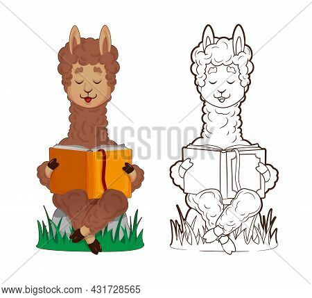 Coloring Book, Cute Lama Is Reading Lying Down, Leaning On A Stack Of Books. Vector , Illustration I