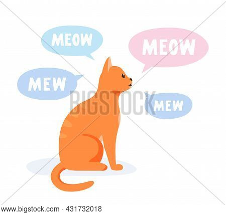 Talkative Cat Meowing And Yowling A Lot. Vocal Domestic Cat Talking And Yelling. Flat Style Vector