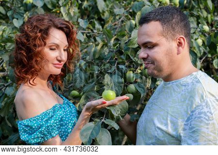 Attractive Woman Holding An Apple On Palm And Offers It To Man Of Middle Eastern Appearance. Allegor