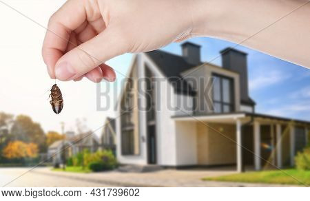 Woman Holding Dead Cockroach And Blurred View Of Modern House On Background. Pest Control