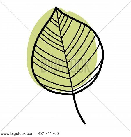 Doodle Leaf Icon Outline Hand Drawn Vector. Nature Fall Autumn. Forest Tree Plant Leaf