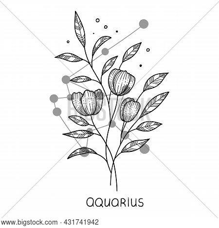 Aquarius Horoscope Flower Icon Outline Vector. Zodiac Sign Astrology. Tattoo Horoscope Flower