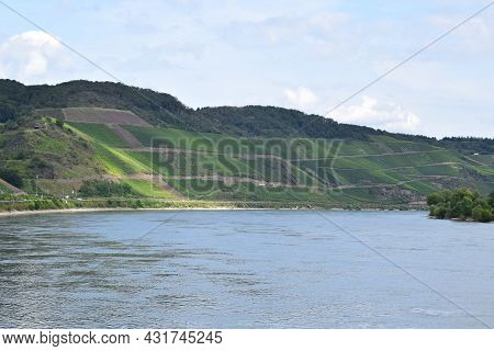 Rhine Valley North Of Boppard In Late Summer