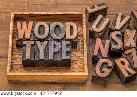 wood type word abstract in vintage letterpress printing blocks with a box, printing and craftsmanship concept