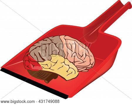 Red Scoop With Human Brain Red Scoop With Human Brain