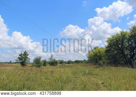 Summer Landscape With Rural Field And White Clouds On Blue Sky