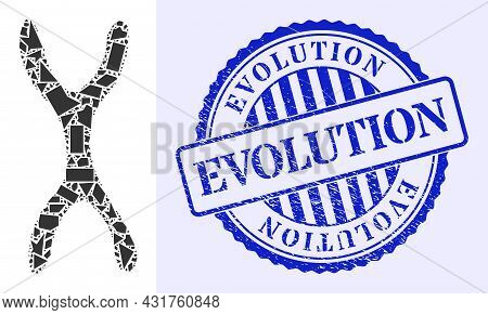 Debris Mosaic Chromosome Icon, And Blue Round Evolution Grunge Stamp Seal With Text Inside Circle Fo