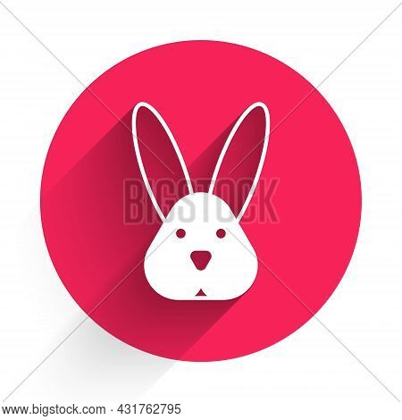 White Animal Cruelty Free With Rabbit Icon Isolated White Background. Red Circle Button. Vector