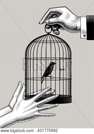 Male hand passes the bird cage into female hands. Vintage engraving stylized drawing