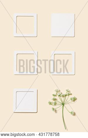 Minimal Autumn Background With Purple Thorny Wild Flower And Pink Squares Paper For Notes Or Message