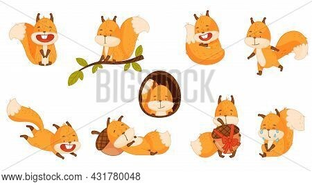 Funny Orange Squirrel Character With Bushy Tail Sitting On Tree Branch And Sleeping On Acorn Vector