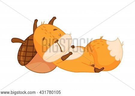 Funny Orange Squirrel Character With Bushy Tail Sleeping With Head On Acorn Vector Illustration