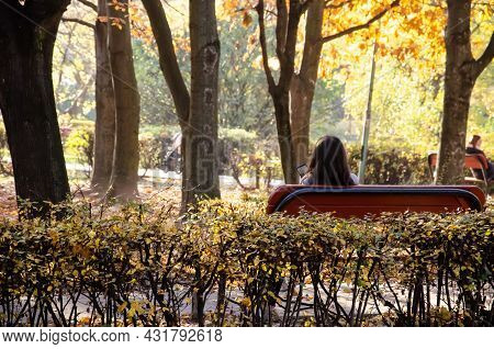 Female Is Sitting With Smartphone In The Autumn Park. Brunette Woman Sits With Her Back On A Bench A