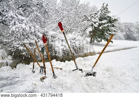 Some Snow Shovels For Snow Removal In Deep Fresh Snow With Gloves. Snow Removal Concept. Weather Col