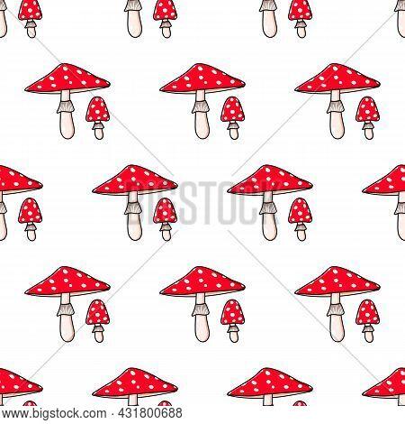 Amanita. Beautiful Autumn Forest Large Poisonous Red Mushroom.