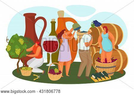 Alcohol Making At Vineyard, Vector Illustration. Flat Man Woman Character Pick Grape Harvest, Winery