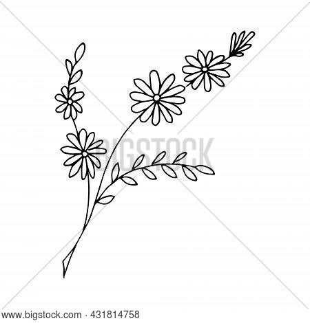 Free Hand Drawn Floral Arrangement Element In Doodle Or Sketch Style. For Greeting Card, Poster, Inv