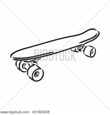 Hand Drawn Skateboard Skateboard Longboard Vector Sketch