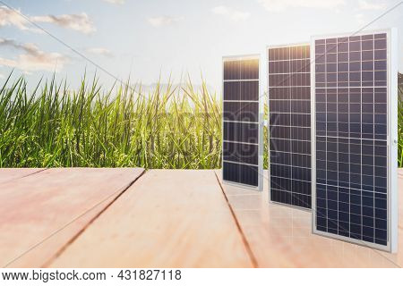 Solar Power Panel And Landscape Of Rice Field With Wooden Floor.