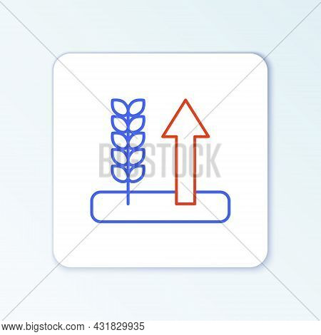 Line Cereals Set With Rice, Wheat, Corn, Oats, Rye, Barley Icon Isolated On White Background. Ears O