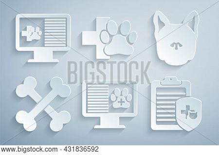 Set Clinical Record Pet On Monitor, Dog, Crossed Bones, , Veterinary Clinic And Icon. Vector