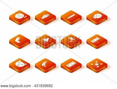 Set Pet, Kidney Beans, Inhaler, Runny Nose, Medicine Bottle And Pills, Honeycomb With Honey Dipper,