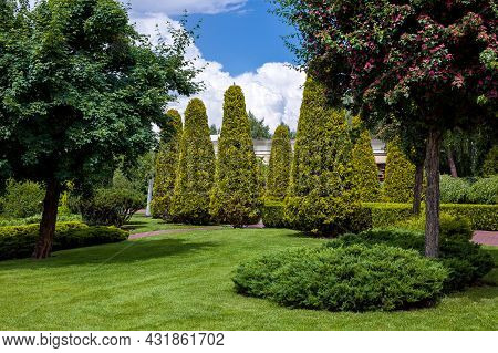 Park With Evergreen Shorn Thujas And Hedges Among Deciduous Trees Of Garden And Lawn On Meadow With