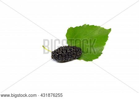 Organic Mulberry Fruits With Green Leaves Isolated On White Background.