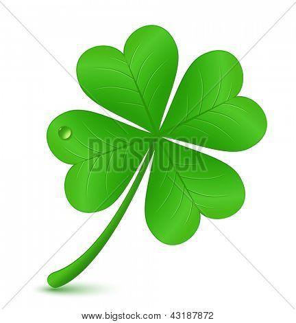 Four leaf clover. Vector illustration. St. Patrick's day symbol