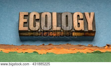 ecology word abstract in vintage letterpress wood type against abstract paper landscape